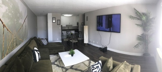 UCLA Housing FURNISHED HOUSING AVAILABLE FOR PRE-LEASE! ACROSS FROM UCLA +WIFI for UCLA Students in Los Angeles, CA