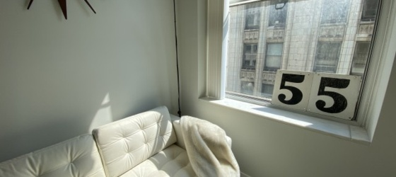 TWO MONTHS FREE RENT** Studio Chicago Loop Across from Millennium Park