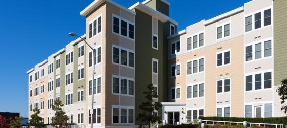 3-Bedroom Apartments near Boston College | Uloop